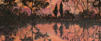 Magenta Reflections